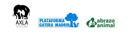 Cachoperras, La Plataforma Gatera Madrid, Axla, Amigos por los animales, y Abrazo Animal se unen contra el abandono animal